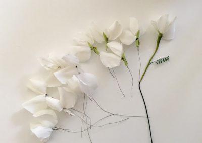 Fleurs-en-papier-blanches